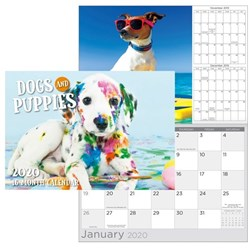 Biscay Dogs & Puppies Wall Calendar A4 Month To View 2020
