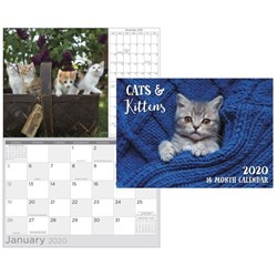 Biscay Cats & Kittens Wall Calendar A4 Month To View 2020