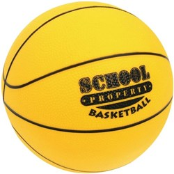 School Property Basketball